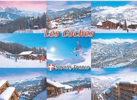 LES COCHES