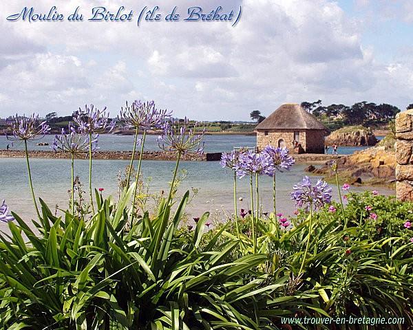moulin_birlot_brehat.jpg