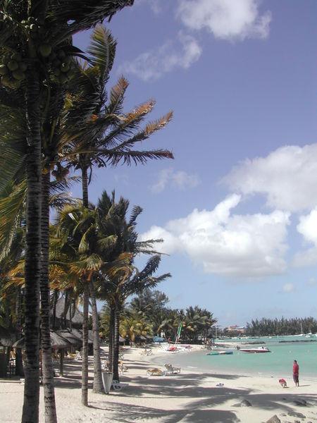 Une plage au nord de l'île