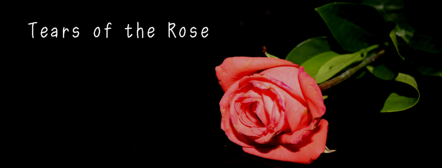 CD12 - Tears of the Rose