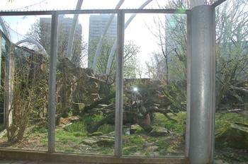 zoo cologne d50 2012 073