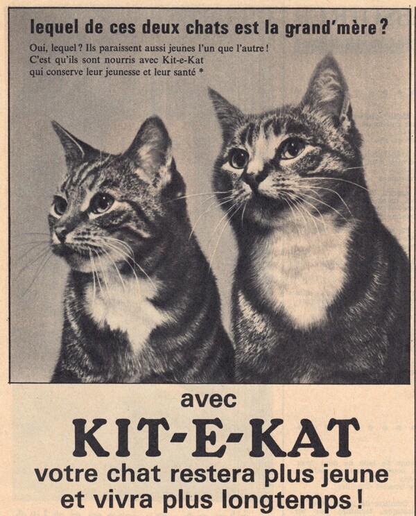 Qui est la grand mère publicité kit et kat