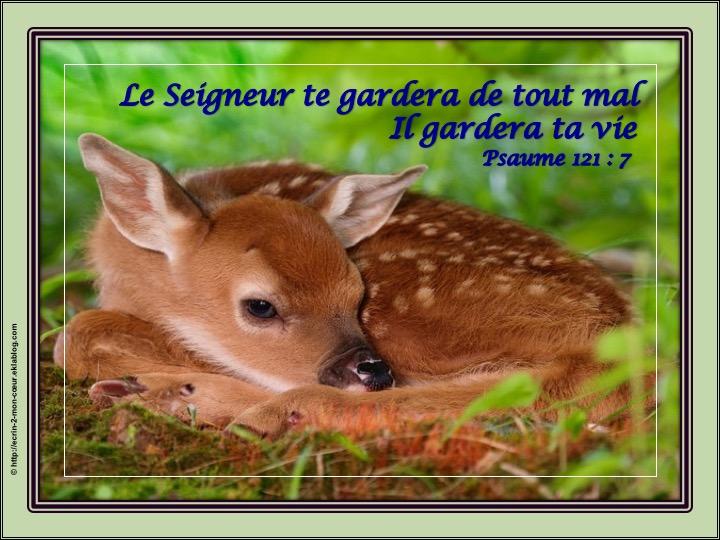 Heureux Anniversaire - Psaumes 121 : 7