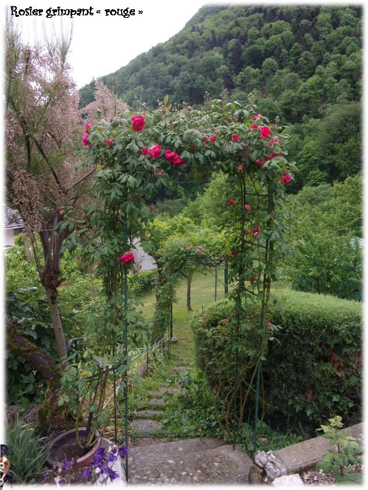 Petite balade au jardin