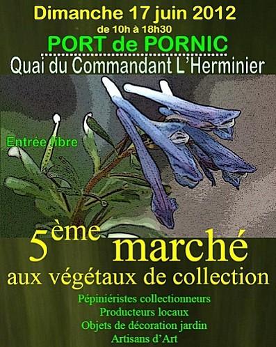 marche-aux-vegetaux-17-6-12-.jpg