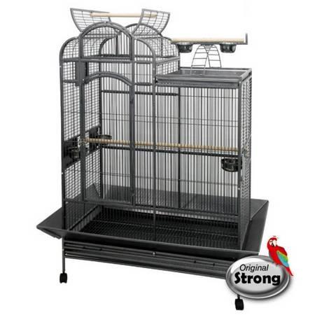 Quel cage prendre ?