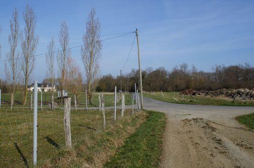 Circuit des Vignes à Orgigné