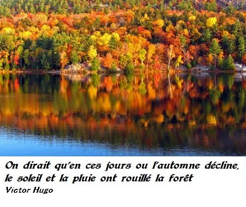Citations automne