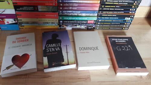 Collection de livres : éditions Buchet et Chastel