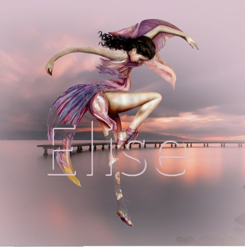 La danse des cygnes ps
