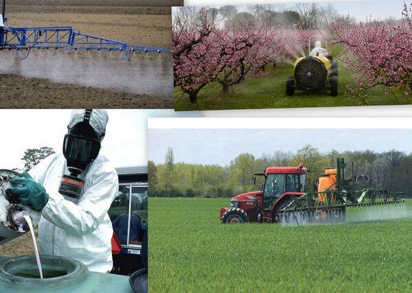 Ecologie: la protection de l'environnement ?