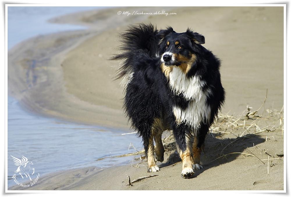 Nettoyage au sable...