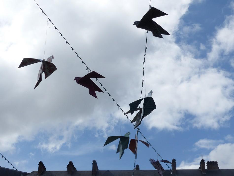 Volent volent les oiseaux