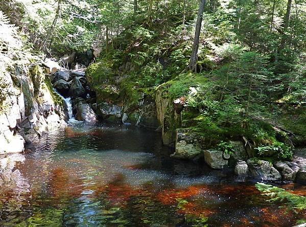 Mont Tremblant rivière La Diable 2