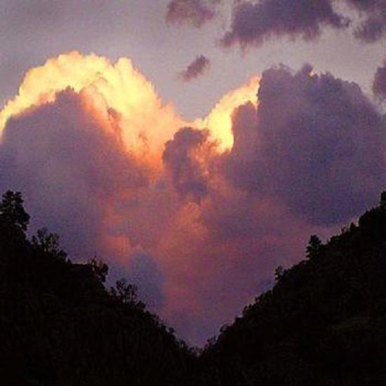 un coeur nuage forêt