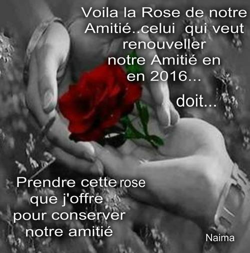 LA ROSE DE L'AMITIE.