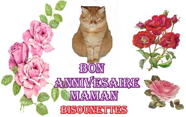 Bon anniversaire .........