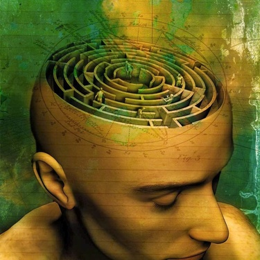Le labyrinthe de la vie...