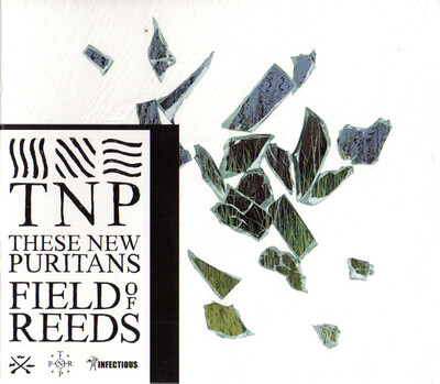 Chefs d'Oeuvre Oubliés # 98 : These New Puritans - Field of Reeds (2013)