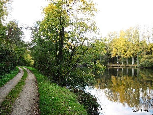 La-Mayenne-2445-1.JPG