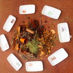 Maison à insectes en maternelle