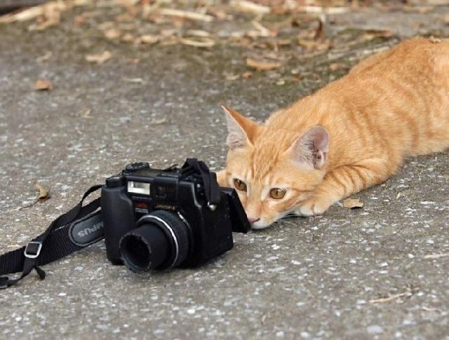 Un petit sourire pour la photo.... ( 3 )