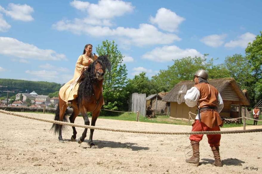 cheval-ennemi-9056.jpg