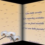 CARTES VIRTUELLES CITATION ORCHIDEES