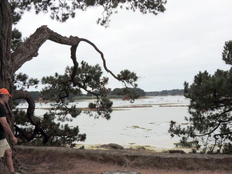 Sur l'île de Berder, Morbihan
