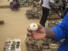 """Résultat de recherche d'images pour """"les fetiches sacrés de l'afrique"""""""