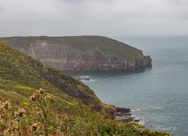 Bretagne : Cap Fréhel