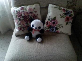panda-robert