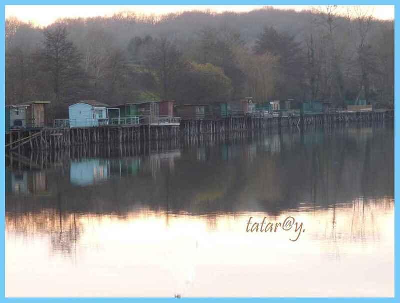 Autour du lac...