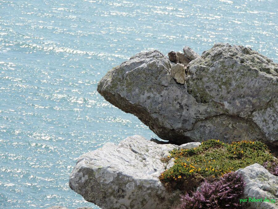 le cap de la chèvre - Crozon (29)