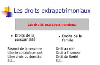 """Résultat de recherche d'images pour """"""""droits extrapatrimoniaux patrimoniaux"""""""