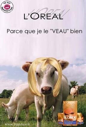 """Résultat de recherche d'images pour """"monsieur blond humour"""""""