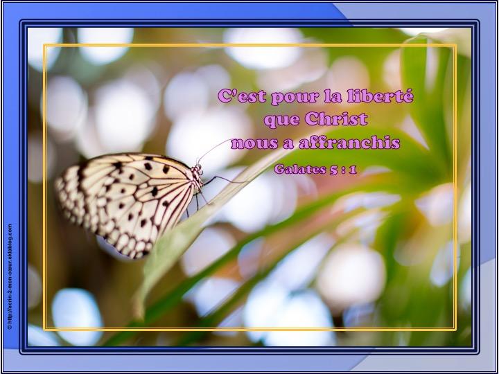 C'est pour la liberté que Christ nous a affranchis - Galates 5 : 1