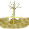 arbre-plantation-droit