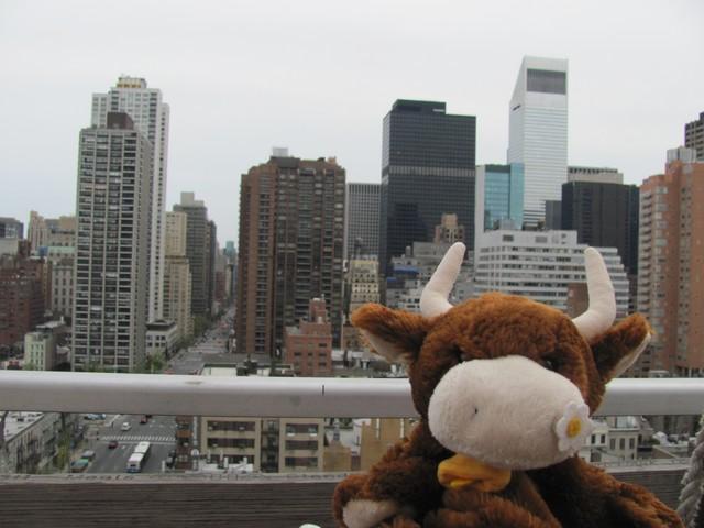 Mirabelle à New York 5