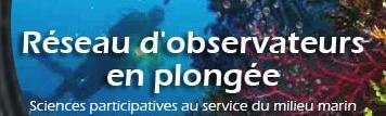 http://ekladata.com/_T7UUKHXtdhPqYUI1UWO7tVDJaI/logo-reseau-observateur-en-plongee.jpg