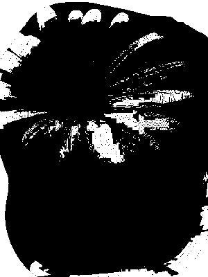 tube noir et blanc divers