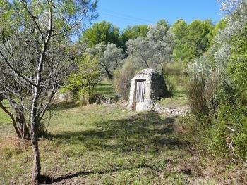 Un vieux puits au milieu des oliviers