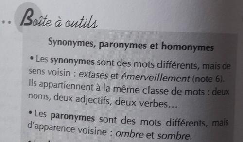 Les paronymes