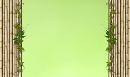 vert bambou 1