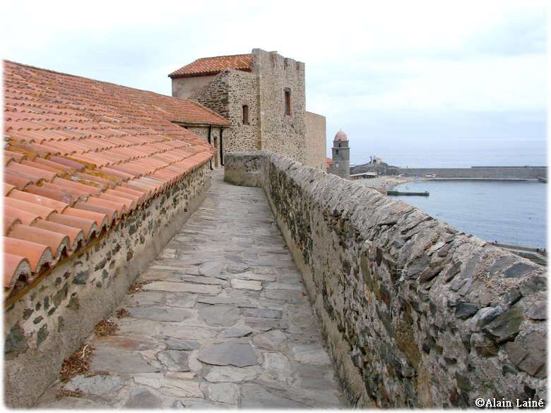 Chateau_Collioure_18