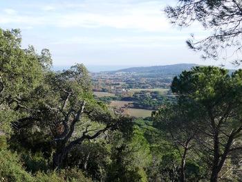 En face, la colline du Cap Camarat (sur le terrain, on devinait le sémaphore)