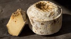 La France, un vrai plateau de fromage.