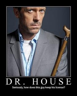 Dr House - Présentation générale et épisode-pilote