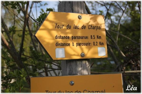Lieux--villes-.-1627-panneau-tour-du-lac.jpg
