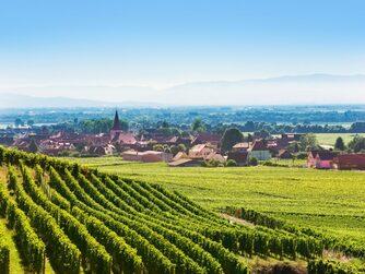 Petite Virée en Alsace